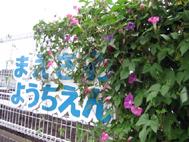2010.9.24_3.jpg